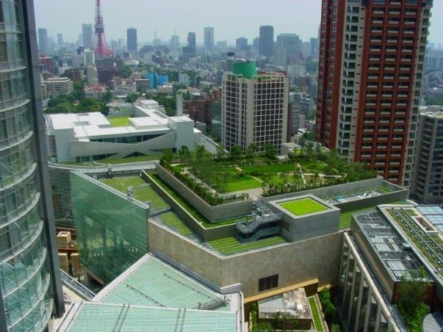 Tetti verdi: così le città diventano più fresche (Foto). Le foglie riducono del 60 per cento il calore del sole
