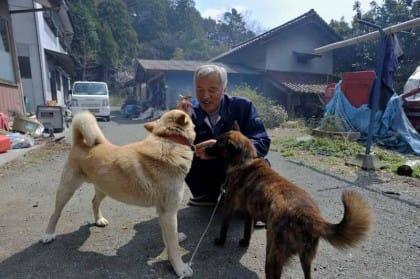 fukushima-animali-abbandonati-naoto-matsumura (3)