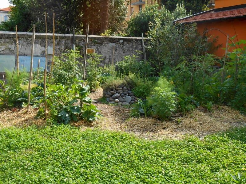 Permacultura per bambini non sprecare - L orto in giardino ...