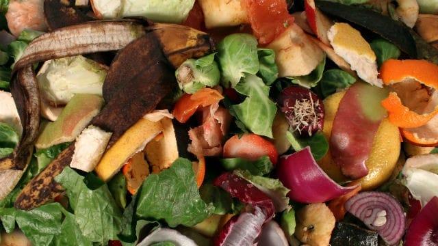 Raccolta differenziata umido organico non sprecare - Rifiuti umido ...