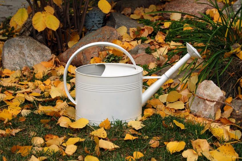 Lavori giardino autunno non sprecare - Lavori in giardino ...