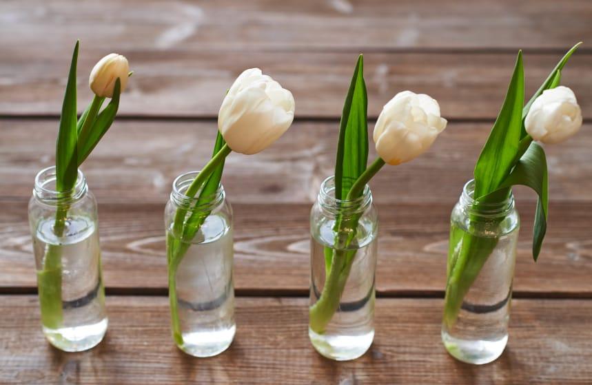 Riciclo bottiglie non sprecare - Portafiori in vetro ...