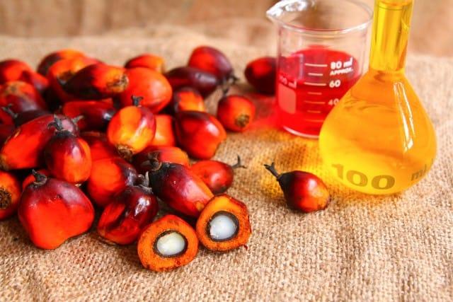 colussi-olio-di-palma (1)