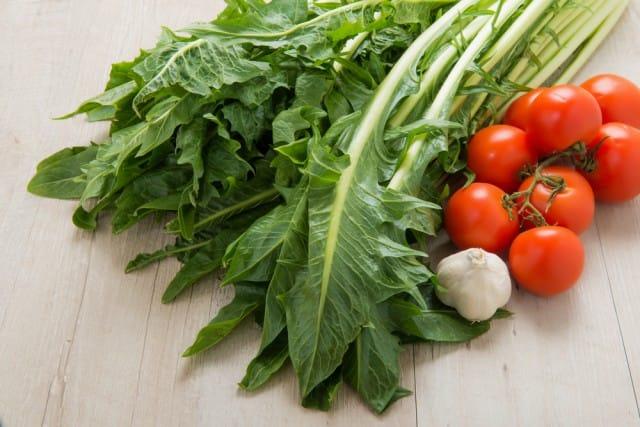 come-coltivare-radicchio-cicoria (2)
