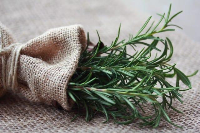 Come coltivare il rosmarino in casa in vaso sul balcone o - Come coltivare il basilico in casa ...