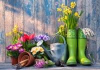 «Il giardino? Fatelo esagerando….» (Paolo Pejrone)