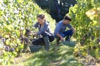 Boom dell'agricoltura in Italia: un terzo delle nuove imprese sono di under 30