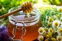 Il miele protegge dai pesticidi. È un vero antibiotico naturale