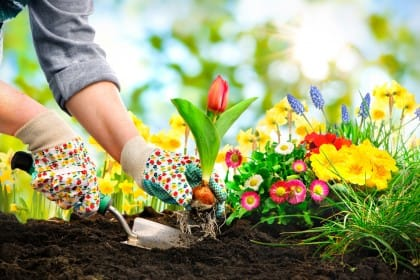 Benefici giardinaggio