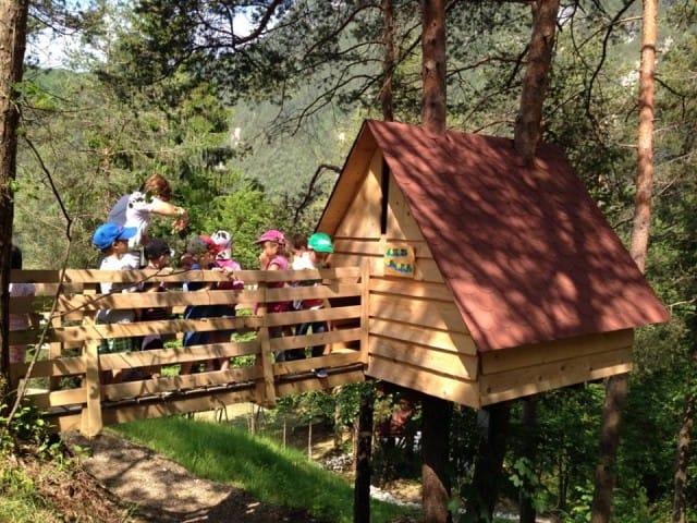 Tree village claut non sprecare - Costruire case sugli alberi ...