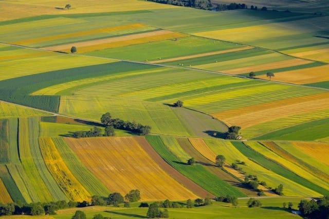 agricoltura-e-turismo-per-rilanciare-sud (2)