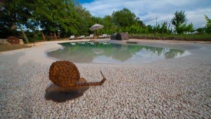 In Toscana l'agriturismo biologico in cui si recupera l'acqua piovana e l'energia proviene da fonti rinnovabili