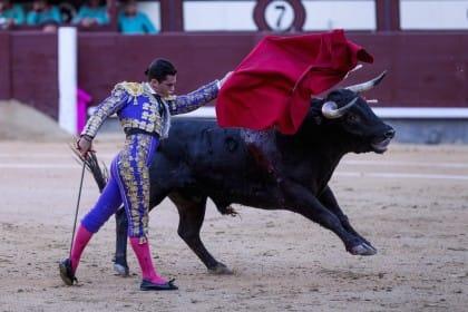 Corrida e morte, è ora di chiudere un rito barbaro, detestato dai giovani spagnoli