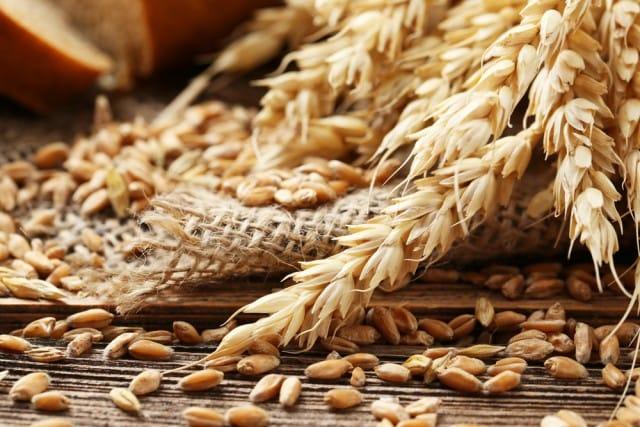 tutela-grano-italiano (3)
