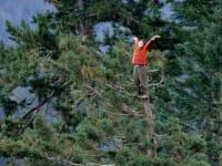 Julia Butterfly Hill, la ragazza che visse su un albero e salvò un'intera foresta (foto)