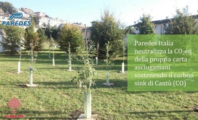 Compensare le emissioni di CO2 piantando alberi: il progetto di Paredes Italia e Rete Clima