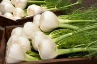 I benefici per la salute del finocchio: favorisce la digestione e aiuta a dimagrire