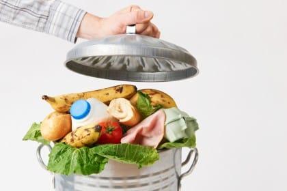 """""""Il cibo non si spreca"""": il progetto delle scuole padovane (Video)"""