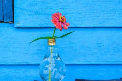 riciclo creativo lampadine