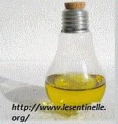 riciclo-creativo-lampadine (4)