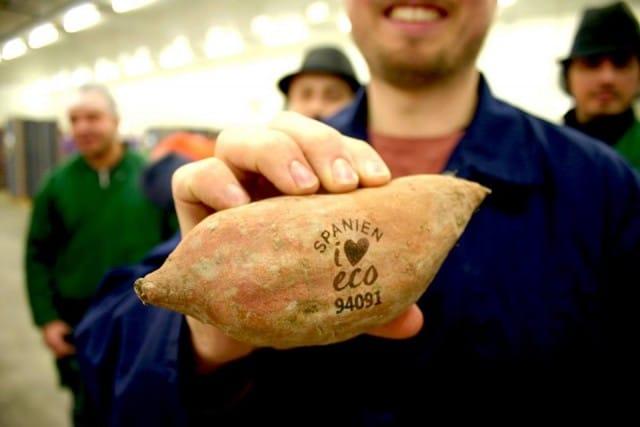 Etichette laser per il cibo, in Svezia risparmiano plastica ed energia con un marchio naturale