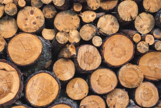 come-sistemare-la-legna-per-il-camino (4)