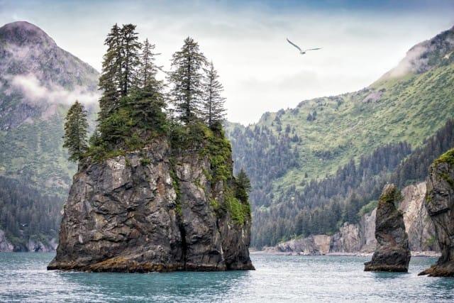 divieto-trivellazioni-artico-atlantico-obama (2)