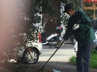 Difendere il verde urbano, tocca a noi. Puliamo le nostra strade e isoliamo i vandali (foto)