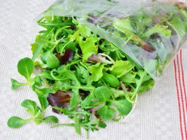 rischi insalate in busta