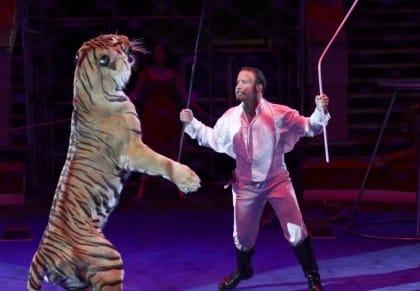 crisi del circo