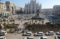 Palme a piazza Duomo a Milano, quello che conta è piantare alberi (foto)