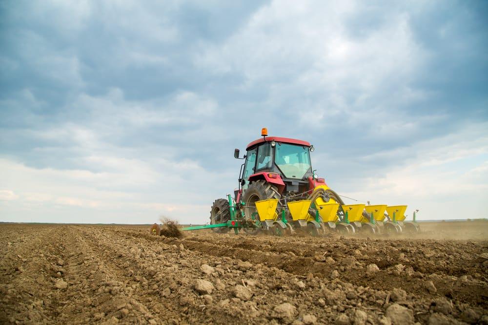 agricoltura in crescita sud italia