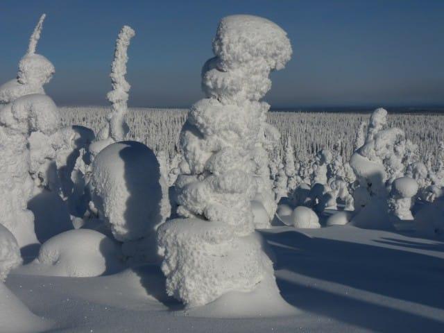aurora-boreale-finlandia-la-coda-delle-volpi-fabrizio-carbone (5)