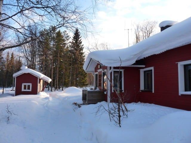 aurora-boreale-finlandia-la-coda-delle-volpi-fabrizio-carbone (9)