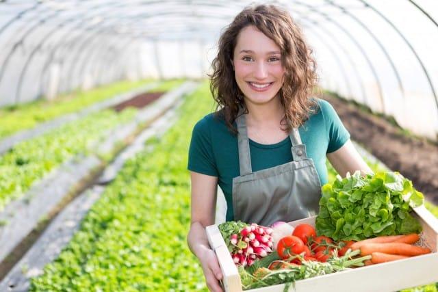 Banca della terra, migliaia di ettari coltivabili in vendita ai giovani agricoltori. Fatevi sotto…