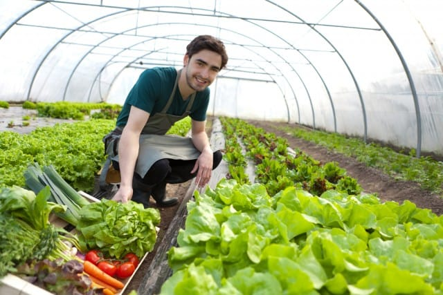 banca-della-terra-giovani-agricoltori (3)