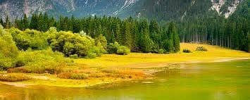 foreste-più-belle-italia-1