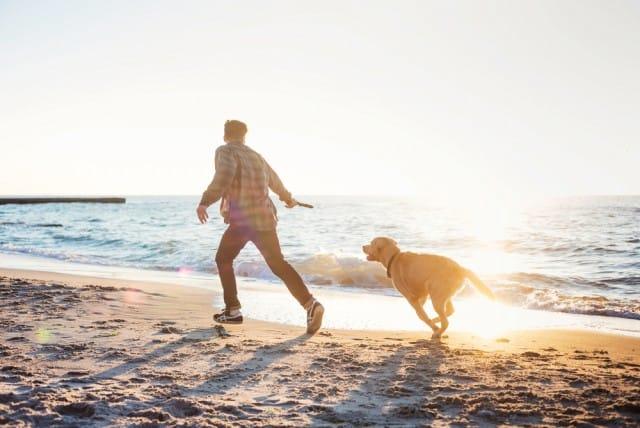 Come fare sport con il proprio cane, divertendosi insieme. Le attività migliori