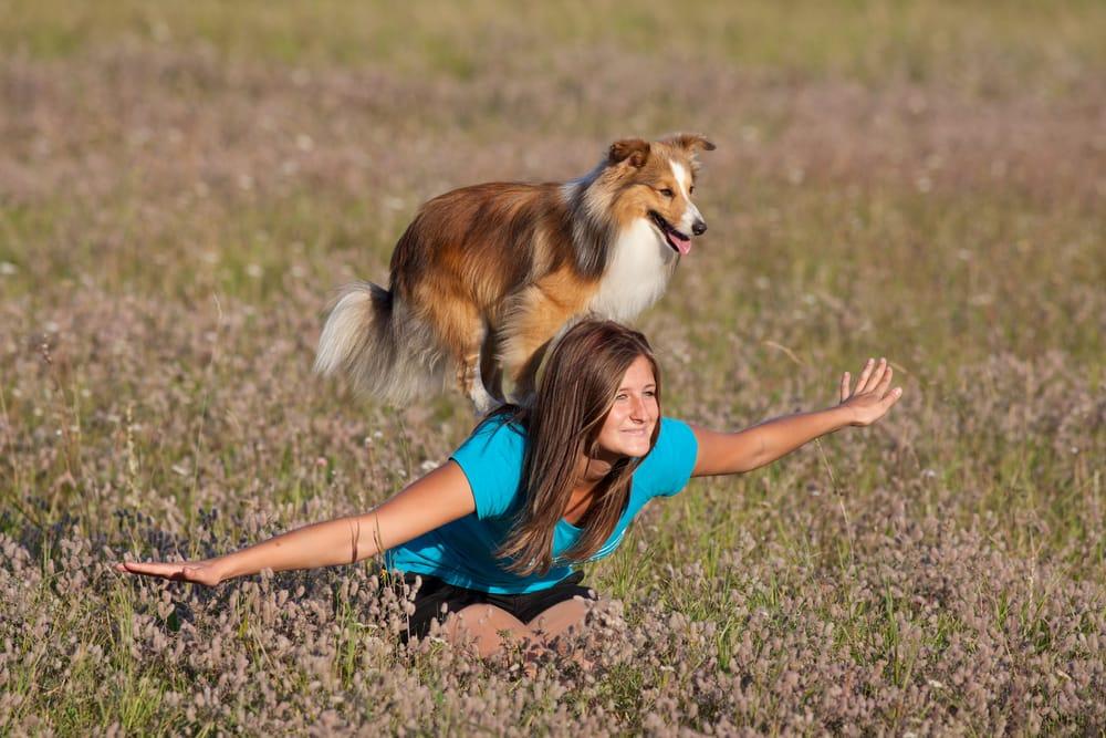 sport-con-cani-3