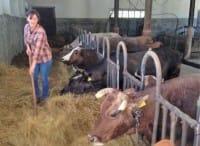 Agricoltura di montagna, la storia di Silvia che ci crede e ha creato un'azienda di qualità