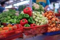 Aiuti alla frutta, così l'Italia si fa soffiare dalla Spagna i preziosi soldi europei