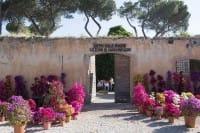 Floracult: a Roma, dal 21 al 23 aprile, ai Casali del Pino, la mostra-mercato sul giardinaggio