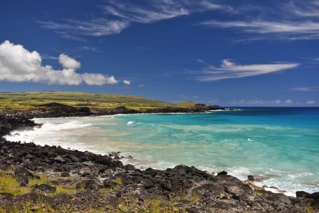 Parchi marini più belli del mondo - Pacifico meridionale