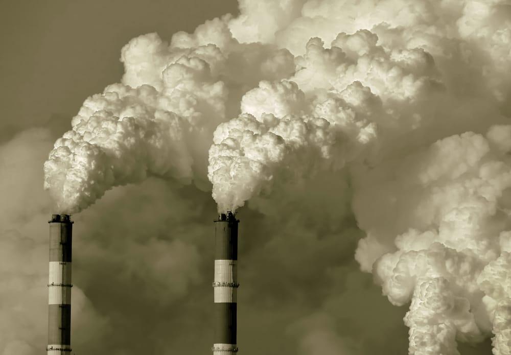 EFFETTI DEI CAMBIAMENTI CLIMATICI