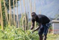 Bolzano, nell'Orto Salewa i migranti si integrano imparando la coltivazione biologica