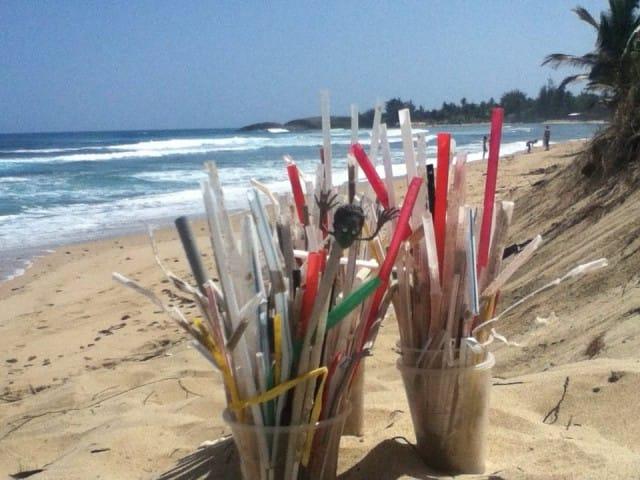 cannucce-di-plastica-inquinamento-impatto-ambientale (3)