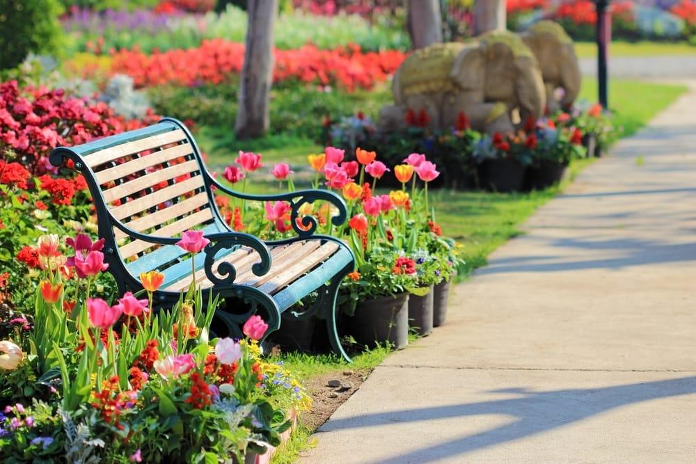 Conquistate Una Panchina Ai Giardini Un Presidio Di Benessere E