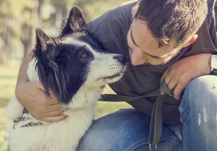 Cani e gatti ci portano l'ormone della felicità. E aiutano a contrastare l'anoressia nervosa