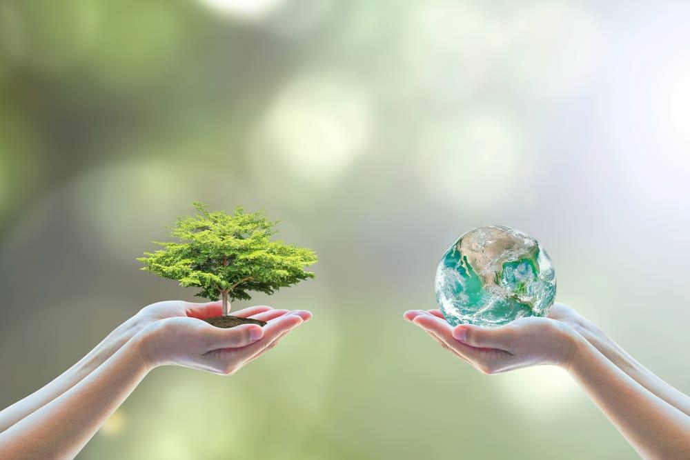 politica ambientale in italia