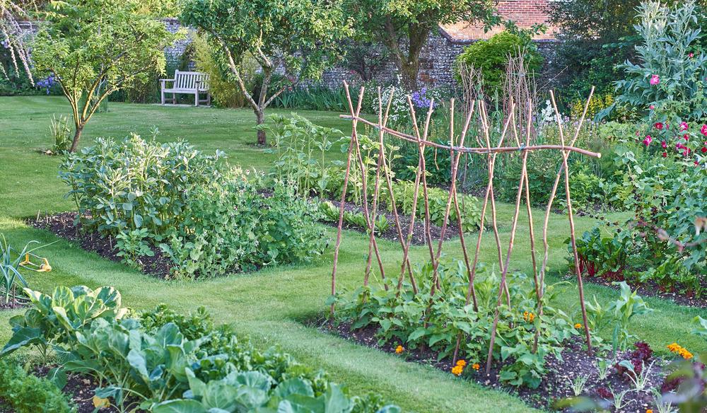 Lavori orto novembre non sprecare for Cosa piantare nell orto adesso